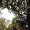 Z'EV Eleven Mirrors To The Light CD