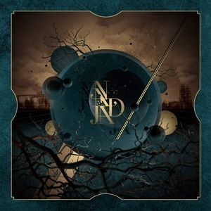 NADJA  Ruins of Morning 10inch
