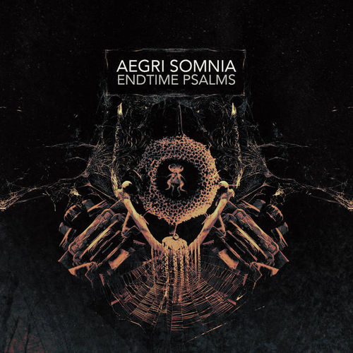 AEGRI SOMNIA Endtime Psalms CD
