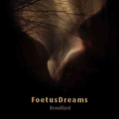 FOETUSDREAMS Brouillard CD-R