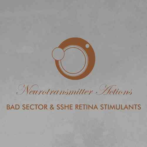 BAD SECTOR / SSHE RETINA STIMULANTS Neurotransmitter Actions DOWNLOAD