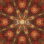 COIL Stolen & Contaminated Songs 2xLP