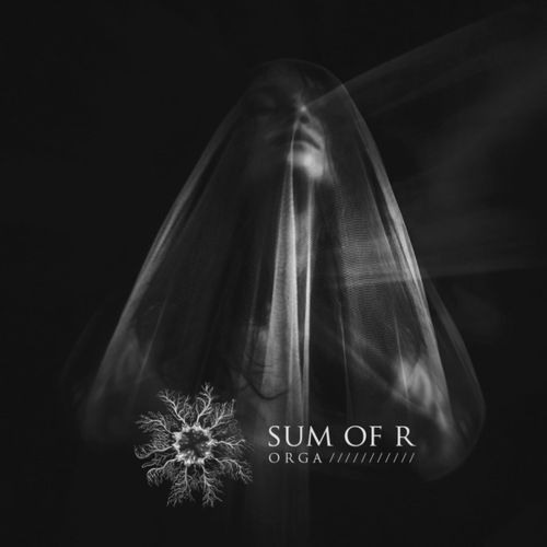 SUM OF R Orga 2xLP/CD