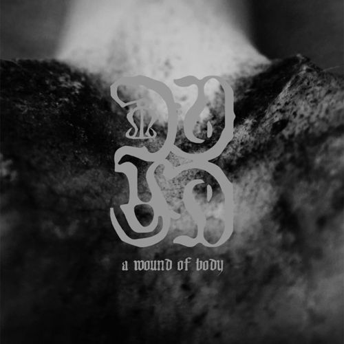 COMMON EIDER, KING EIDER  A Wound Of Body LP